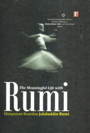 the meaningful life with rumi